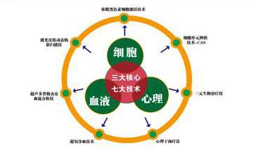 一个平台三大核心七大科技